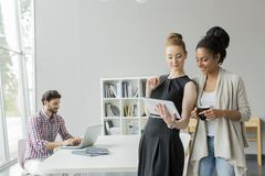 Young people in office Stock Photography