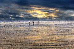 Young people Paddling in the sea Royalty Free Stock Photography