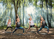 Young people perform stretching exercises in forest. Group of young people perform easy stretching exercises in sun lighted forest Stock Image