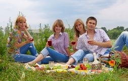 Young people at the picnic. Four friends having fun at the picnic Portrait of a smiling romantic young couple lying at park Stock Photography