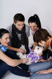 Young people playing with dog. Three girls and one boy playing with cute dog Royalty Free Stock Photo