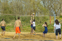 Young people playing volley Royalty Free Stock Photography
