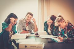 Young people preparing for exams Royalty Free Stock Photography