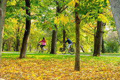 Young people riding bicycle down the park alley in autumn Stock Photos