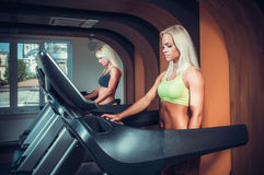 Young people running on treadmill Royalty Free Stock Photography