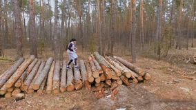 Young people runs on the felled trees in the forest and trains their bodies stock video