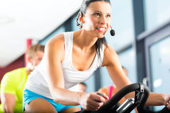 Young People Spinning in the fitness gym. Young People - group of women and men - doing sport Spinning in the gym for fitness Stock Photo