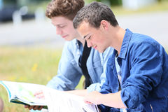 Young people studying outdoors Royalty Free Stock Photo