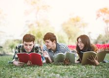 Young people studying reading book in park. education study by read. stock photos