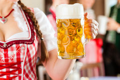 Young people in traditional Bavarian Tracht in restaurant or pub. One woman is standing with beer stein in front, the group in the background Royalty Free Stock Photo