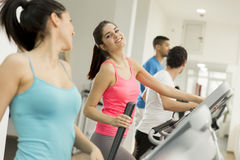 Young people training in the gym Stock Photos