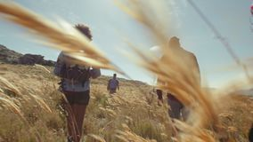 Young people walking through grassy fields in countryside. Young people hiking in countryside. rear view of friends on country walk on a summer day stock video footage
