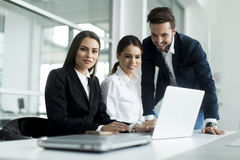 Young people working in the office Royalty Free Stock Image