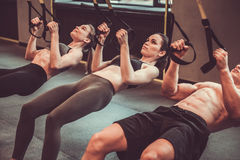 Young people working out with TRX Royalty Free Stock Images