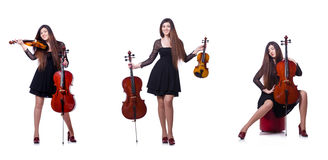 The young performer with violin on white Stock Photography