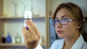 Young pharmacist checking medicine ingredients, looking at label of container royalty free stock image