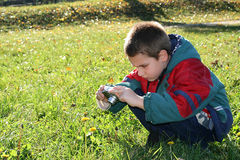 Young Photographer. This is a young nature photographer in action Stock Image