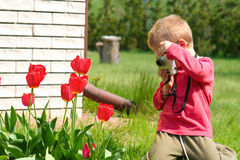 Young photographer. Young boy, photographer, digital camera, one person Stock Photos