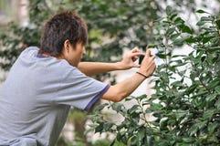An Young Photographer Stock Photos