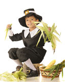 Young Pilgrim Husker Royalty Free Stock Photography