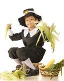 Young Pilgrim Husker Royalty Free Stock Image