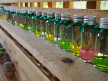 Young plant in a bottle on the shelf. Young plant in a bottle fill with color gel on the wooden shelf stock photography
