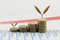 young plant grown to stack gold coin in business growth concept. Royalty Free Stock Photo