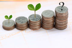 Young plant grown to stack silver coin in business growth concep Royalty Free Stock Image