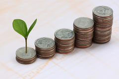 young plant grown to stack silver coin in business growth concep Stock Photo