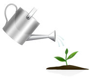 Young plant with watering can Royalty Free Stock Photos