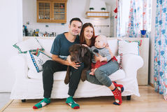 A young playful family at home on the couch. Happy parents with baby and dog on the couch at home interior. Lifestyle, family and togetherness concept. Portrait Stock Images