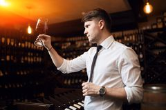 Young pleasant man identifying and discussing wines royalty free stock images