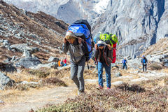 Young Porters of Mountain Expedition carrying heavy Bags. Using traditional Nepalese Head Straps on popular trek to Meru Peak. Sabai Valley, Solo Khumbu Area Royalty Free Stock Photos