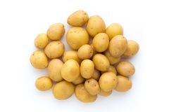Young potato isolated on white background. Harvest new. Flat lay Stock Image