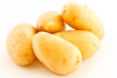 Young  potatoes Stock Photo
