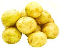 Young potatoes Stock Image