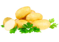 Young potatoes Royalty Free Stock Images