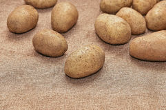 Young potatoes. On canvas close up Stock Photos