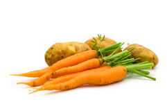 Young potatoes and carrots Stock Images