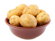 Young potatoes in a clay bowl Stock Image