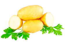 Young potatoes, decorating of parsley . Isolated Stock Image