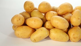 Young potatoes stock footage