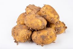 Young potatoes on a white kitchen table. Vegetables prepared for cleaning. White background agriculture baby brown bunch crop cut dinner dish food foodstuff stock images