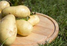 Young potatoes on wood tray Royalty Free Stock Photo