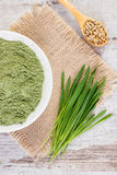 Young powder barley, barley grass and grain on jute canvas, old wooden background. Young powder barley in bowl, barley grass and grain on jute canvas, old wooden Stock Photo