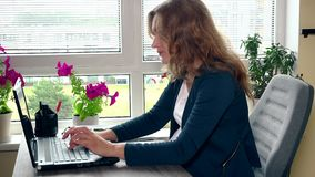 Young pregnant business woman using laptop at office stock footage