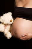Young pregnant Caucasian woman holding teddy bear Stock Photography