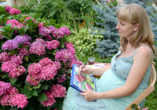 The young pregnant female artist draws water color paints a blossoming hydrangea Royalty Free Stock Photos