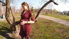 Young pregnant girl in dress is stroking tummy stock video