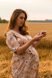 A young pregnant girl among wheat fields. Girl in a gentle way expectant mother. Beautiful country landscape. Photos for magazines, posters and websites Royalty Free Stock Photography